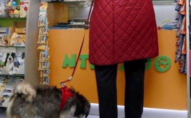 Shoppen-mit-Hund