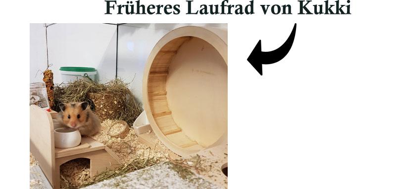 Früheres-Laufrad-von-Kukki