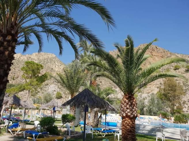 Pool und Palmen überall
