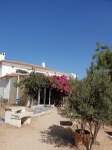 El Refugio Torrevieja (4)