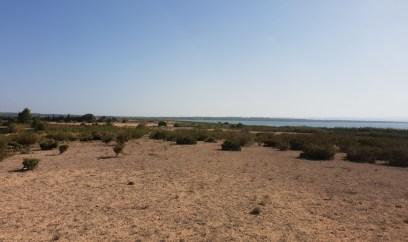 El Refugio Torrevieja (5)