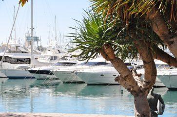 Palmen und Boote