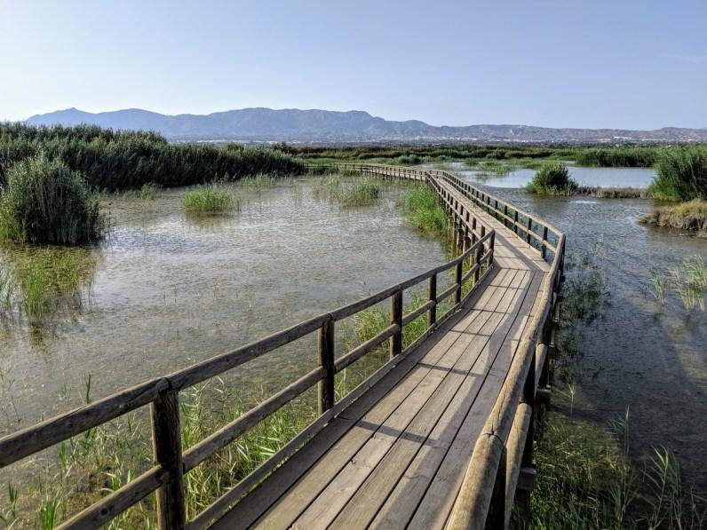 Parque Natural el Hondo Wanderweg