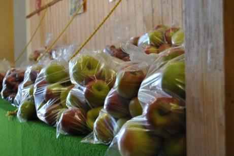 verschiedene Apfelsorten warten darauf probiert zu werden!