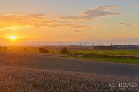Sonnenuntergang - Nördliches Harzvorland