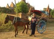 A horsecart for Naing Naing in Bangan - ein Reisebericht