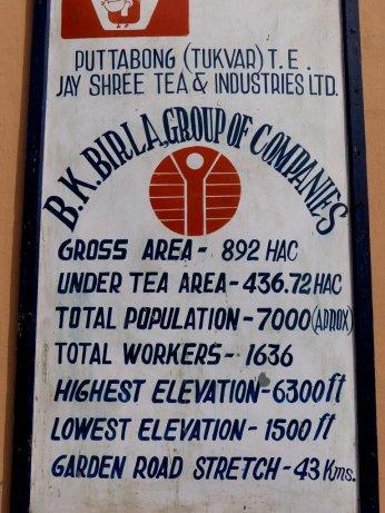 Darjeeling-2015-02