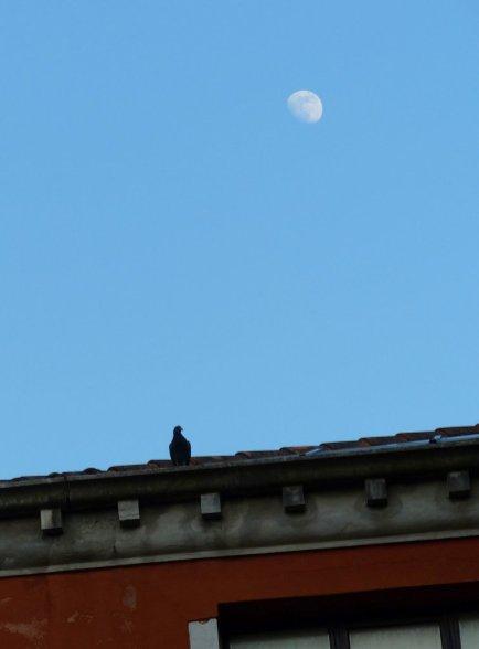 Venedig-Mai15-062