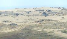 Dünenlandschaft auf der kurischen Nehrung
