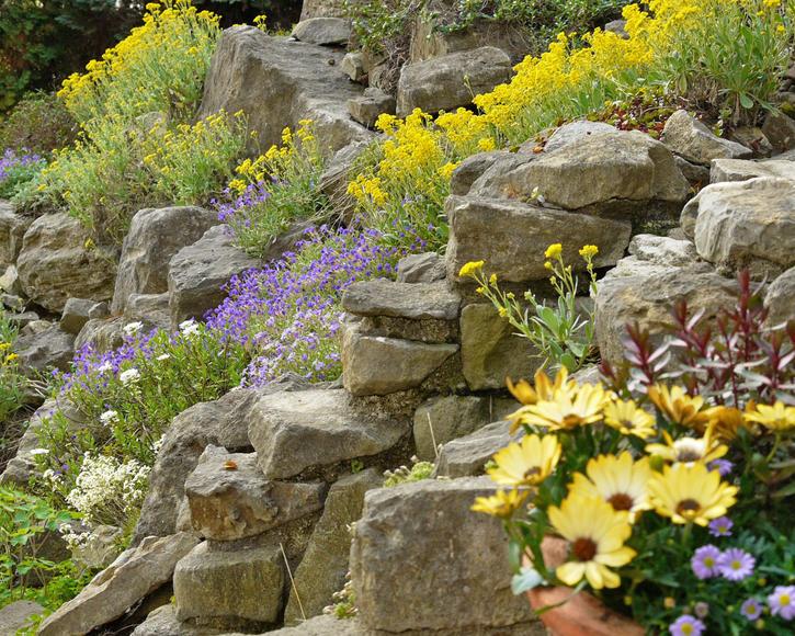 Steingarten anlegen und gestalten   Mein schöner Garten