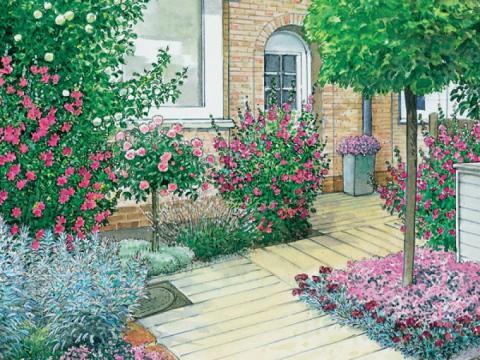 mein schoener garten de ideen vorgartengestaltung:  ideen zum nachmachen - mein schöner