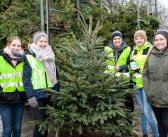 Tannenbaumaktion: KjG freut sich über 950 Euro für die Jugendarbeit im Liesedorf