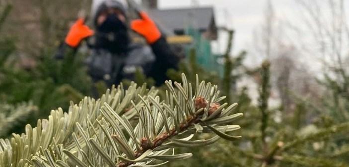 Tannenbaumaktion in Wadersloh unter besonderen Bedingungen