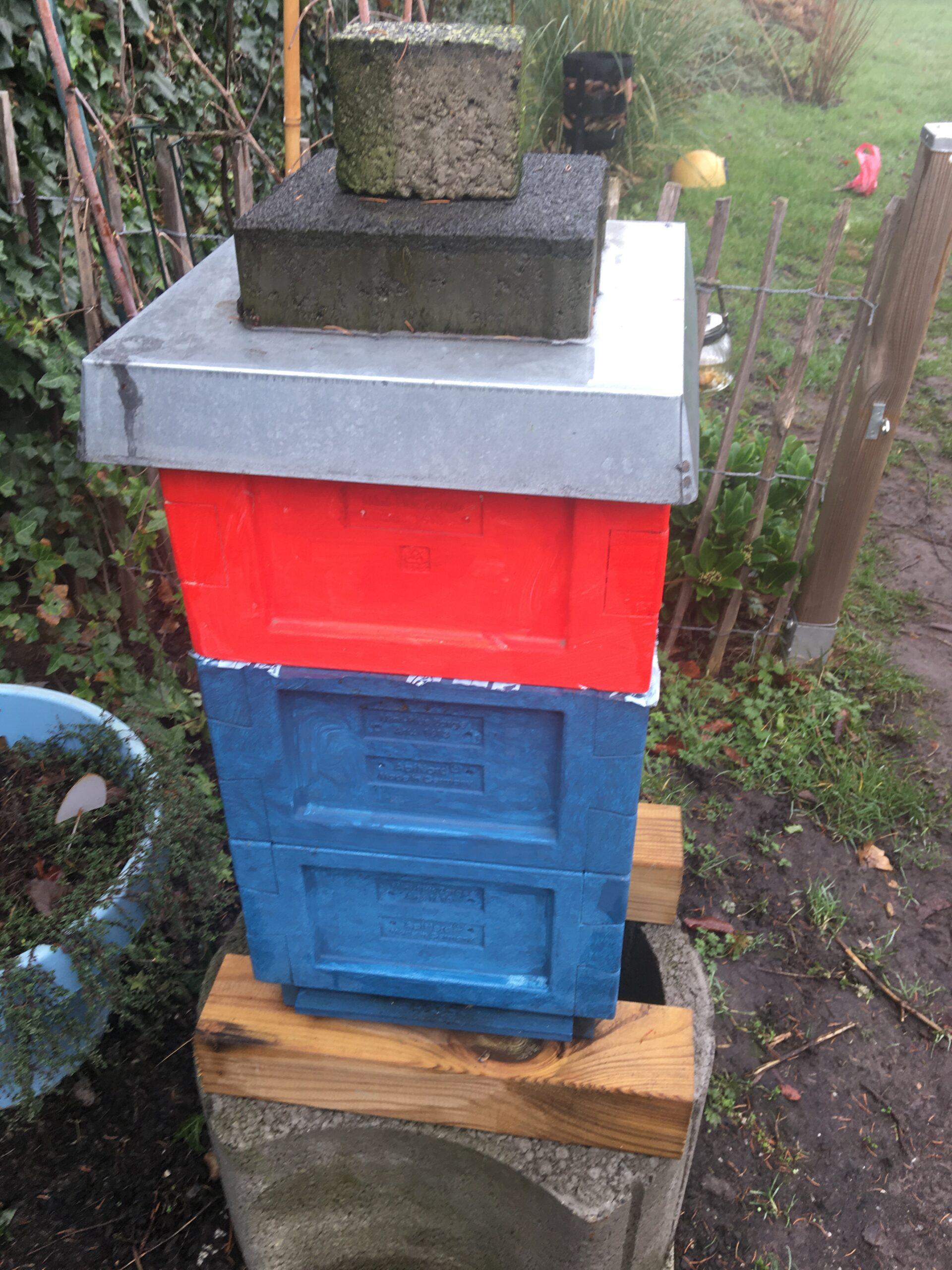 Fütterung der Bienen im Januar 2020 Mini Plus