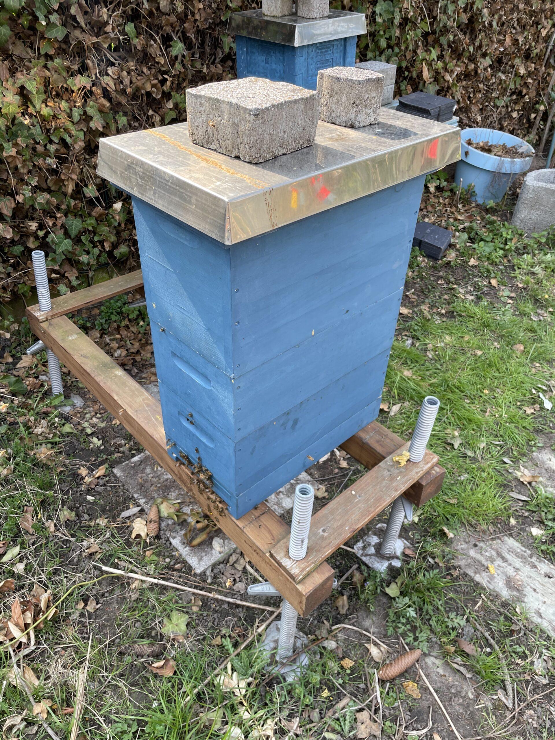 Arbeiten an den Bienen Bild April 2021
