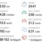 Die Fitness-App Endomondo