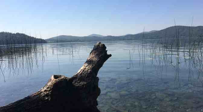 Mofetten am Laacher See