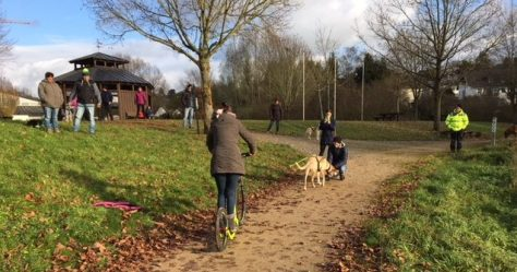 Zughundetraining in Hillesheim in der Eifel
