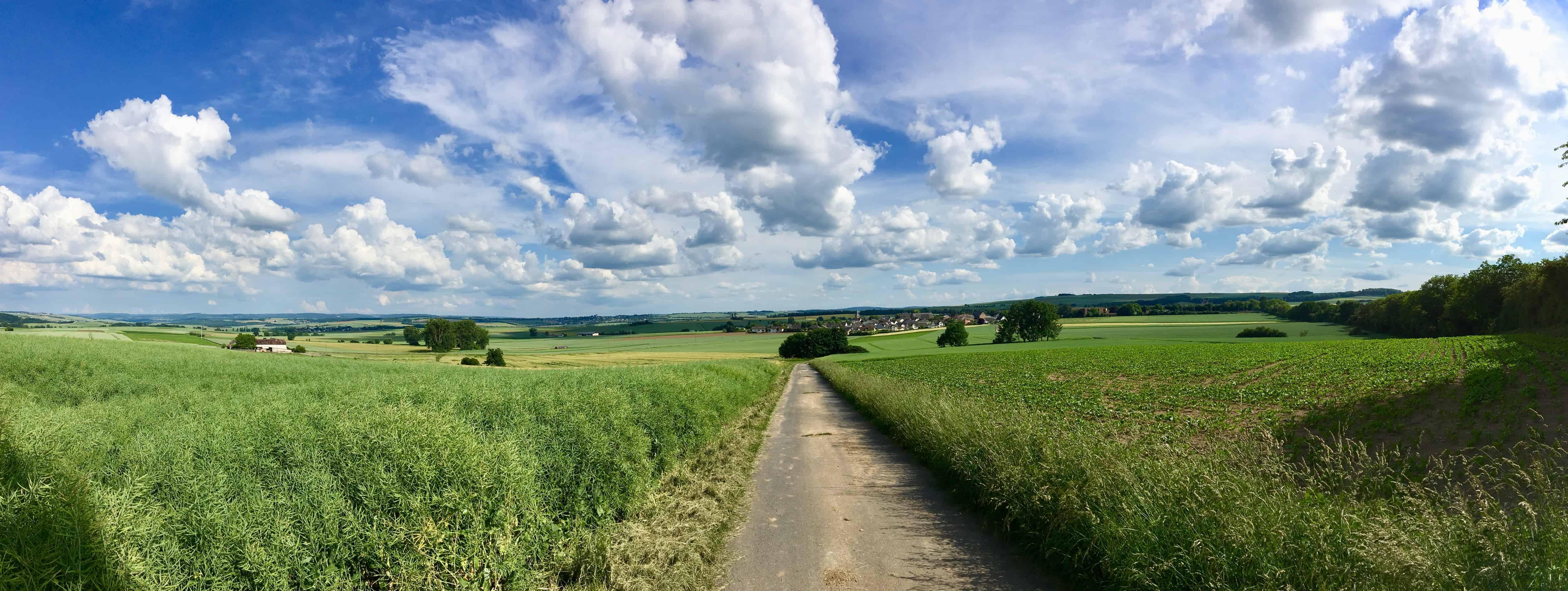Maifeld-Radweg Blick auf Mertloch Panorama