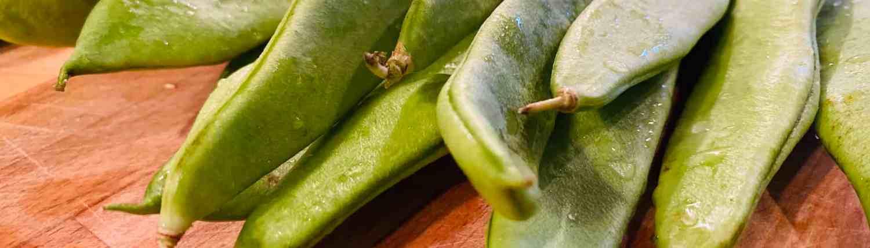 Grüne Stangenbohnen für Eifeler Bohnensuppe