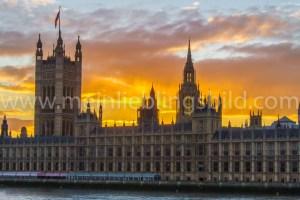 London Foto Houses of Parliament auf Leinwand, Alu Dibond, Wandbild