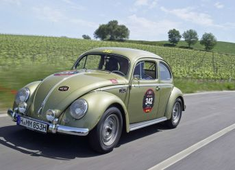 Zwei starke Käfer und ein Abenteuer über 1.000 Meilen