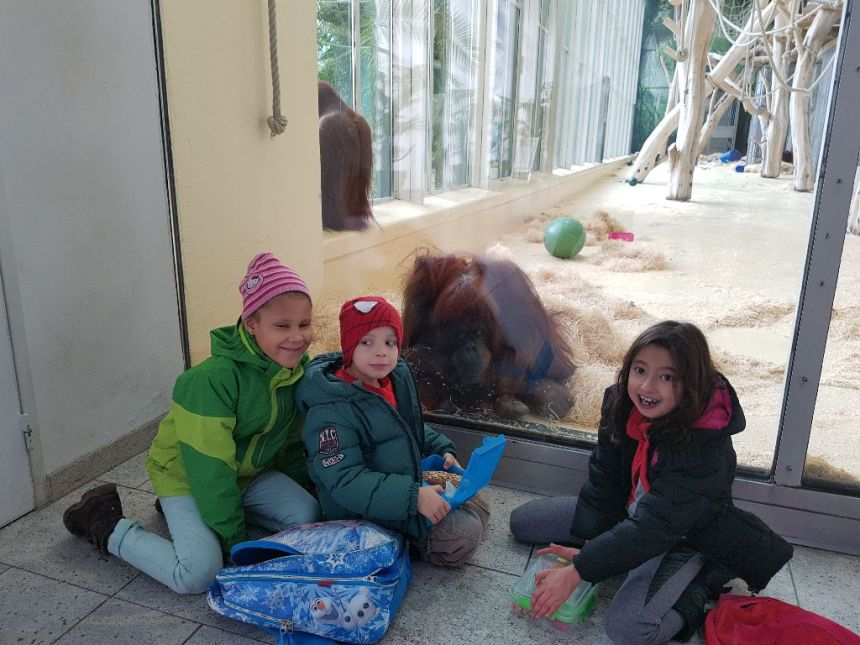 2016_11_outing_zoo-18