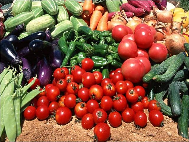 Pertanian: Jaminan Keamanan Pangan dengan sistem HACCP