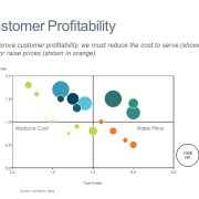 Bubble Chart of Customer Profitability