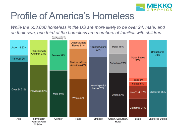 100% stacked bar chart of homeless by age, gender, race, ethnicity, location, and sheltered status, based on data from HUD.
