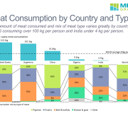 Bar chart of per capita meat consumption in 5 countries and 100% stacked bar chart of meat consumption by type in each country and world average