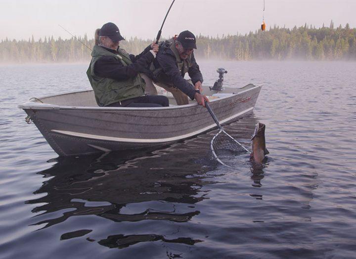 Des poissons pas piqués des vers!