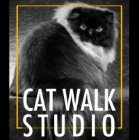 cat walk studio _cat hotel_logo 2016