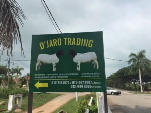 Djaro trading sheep farm melaka