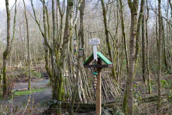 "Photo of a bird table with a sign saying ""bird buffet."" It's in amongst the trees"