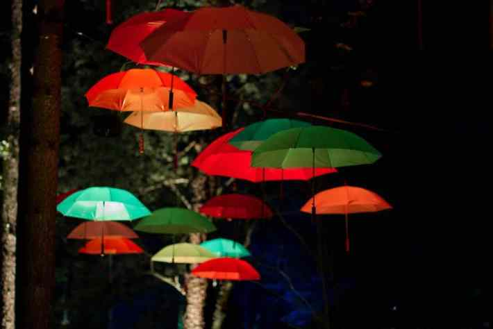 Enchanted Forest, Perthshire, Scotland. Umbrellas suspended and lit up by lights.