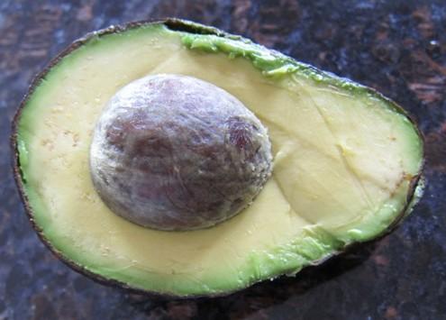 avocado half picture