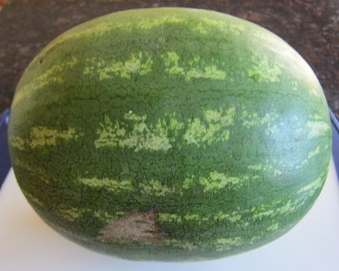 whole watermelon picture