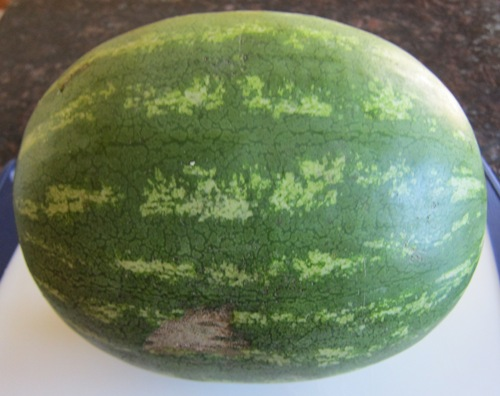 whole watermelon picture