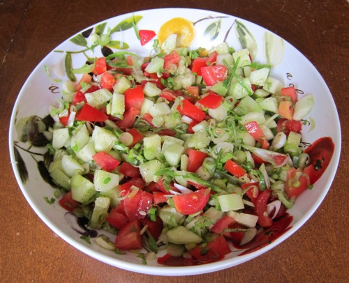 salad with tomatoes, cucumbers and green spring onions scallions