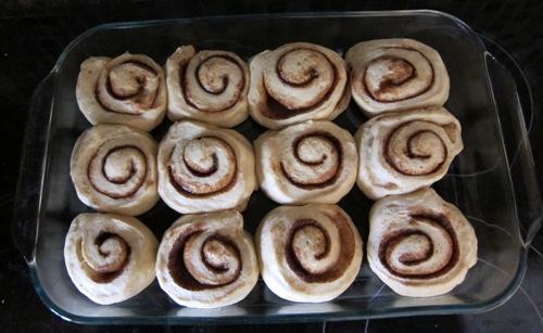 cinnamon rolls finished rising