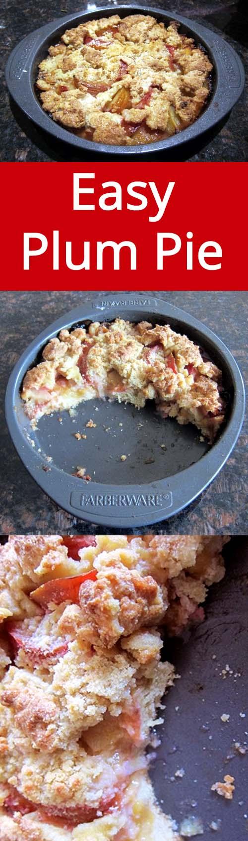 Plum Pie Recipe with fresh plums - so easy, anyone can make this!   MelanieCooks.com