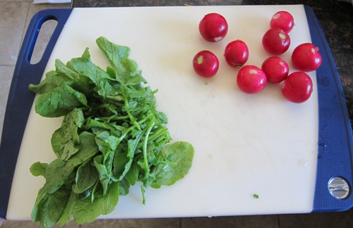 cut off radish greans - leaves and radishes