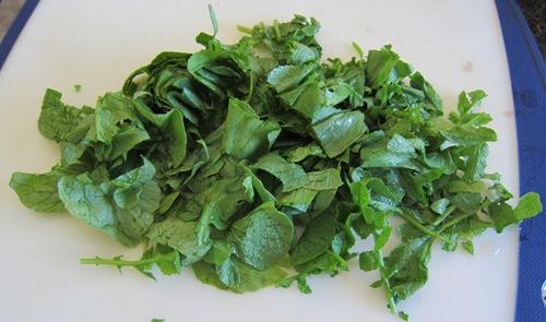 chopped radish greens, radish leaves