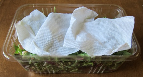 paper towel to keep lettuce fresh