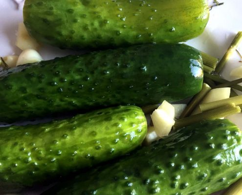 Easy Refrigerator Garlic Dill Pickles Recipe