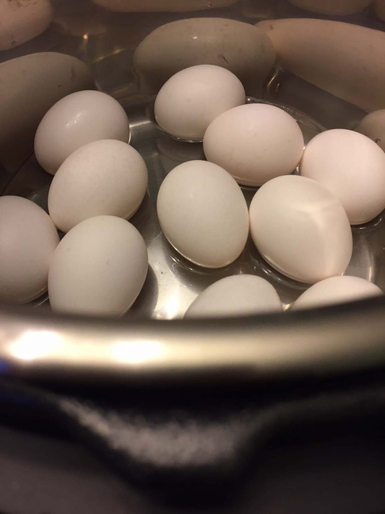Instant Pot Boiled Eggs Recipe