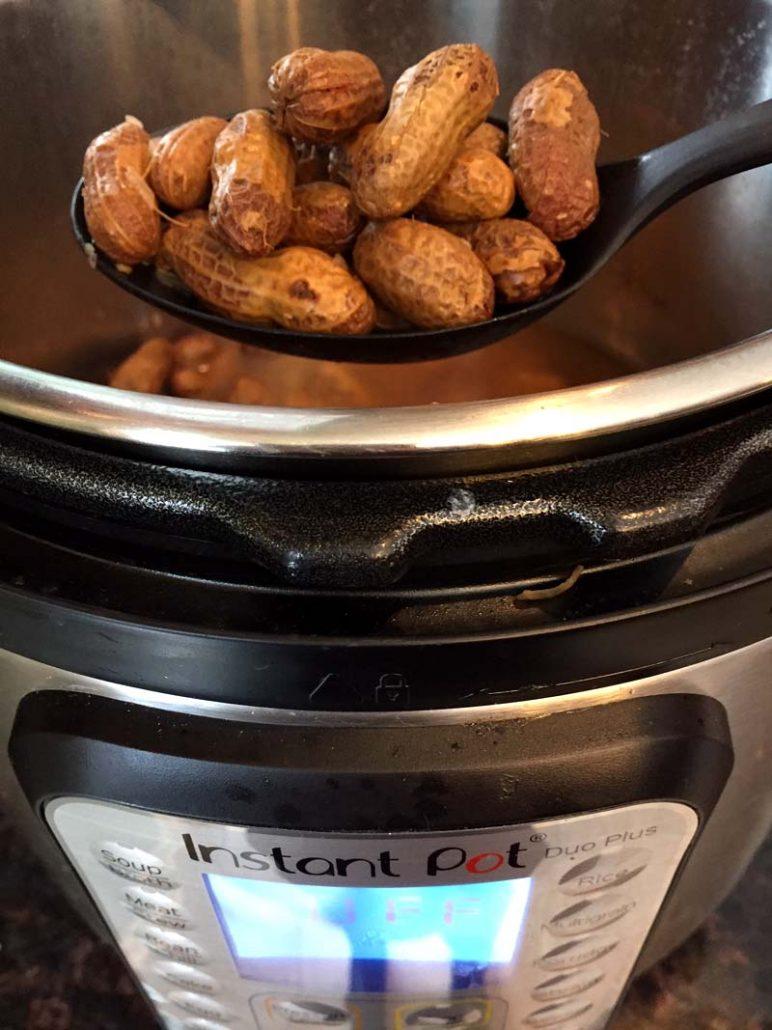 Instant Pot Boiled Peanuts