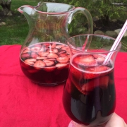 Low Carb Sangria Recipe
