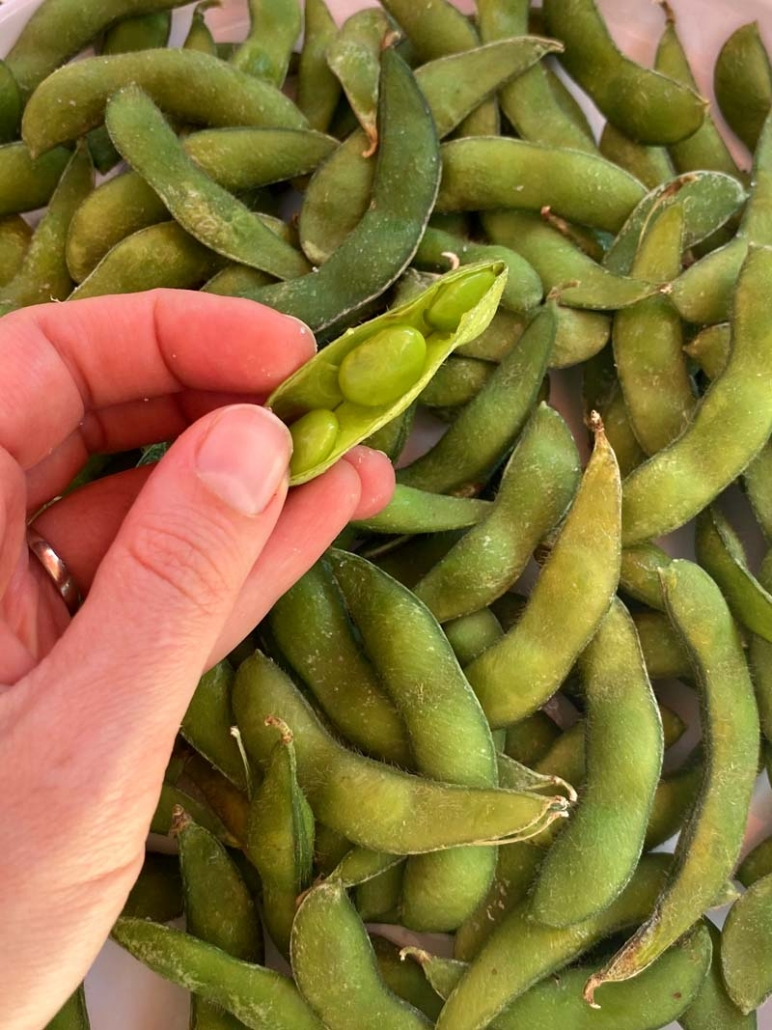 eating edamame out of its pods
